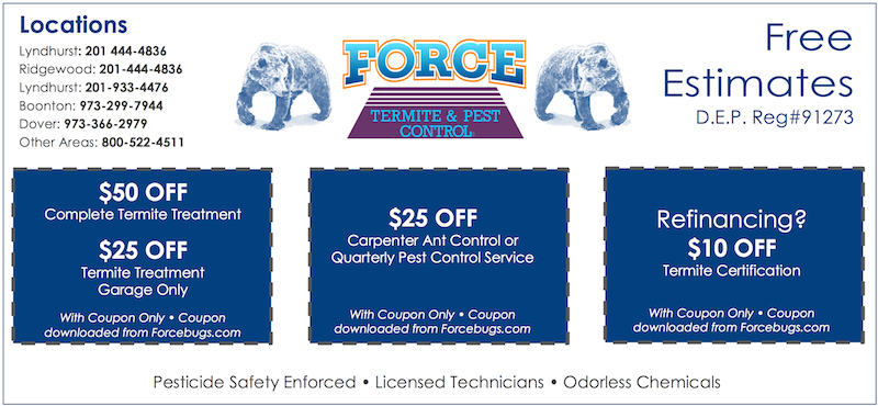 Force Bugs Treatment Coupon