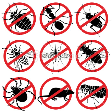 stock-illustration-23393932-no-bugs